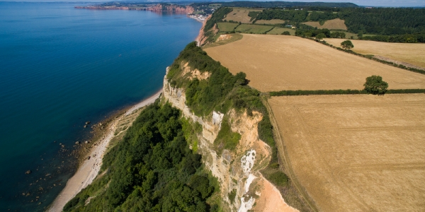 Devon: An Area of Outstanding Natural Beauty_15