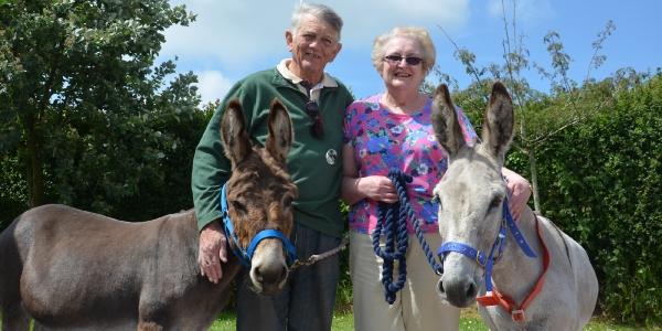 Sidmouth Donkey Sanuary_5